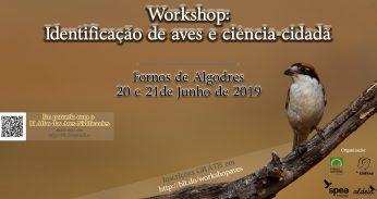 Workshop: Identificação de Aves